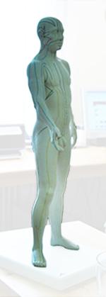 figur_meridiane